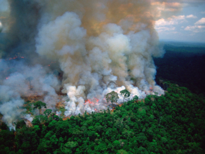 Unprecedented Fires are Devastating Our Planet from the Amazon to the Arctic